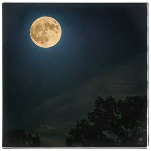 hunters-moon